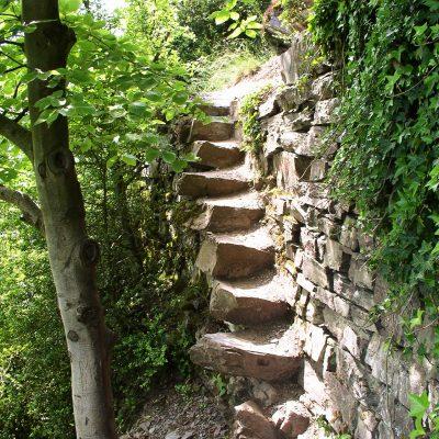 Klettersteig im Calmont, Europas steilstem Weinberg